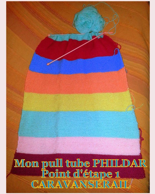 Mon pull tube PHILDAR: 1er point d'étape!