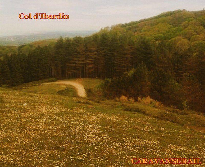 Récit de notre séjour à Ibardin (Pyrénées Atlantiques) , suite et fin!