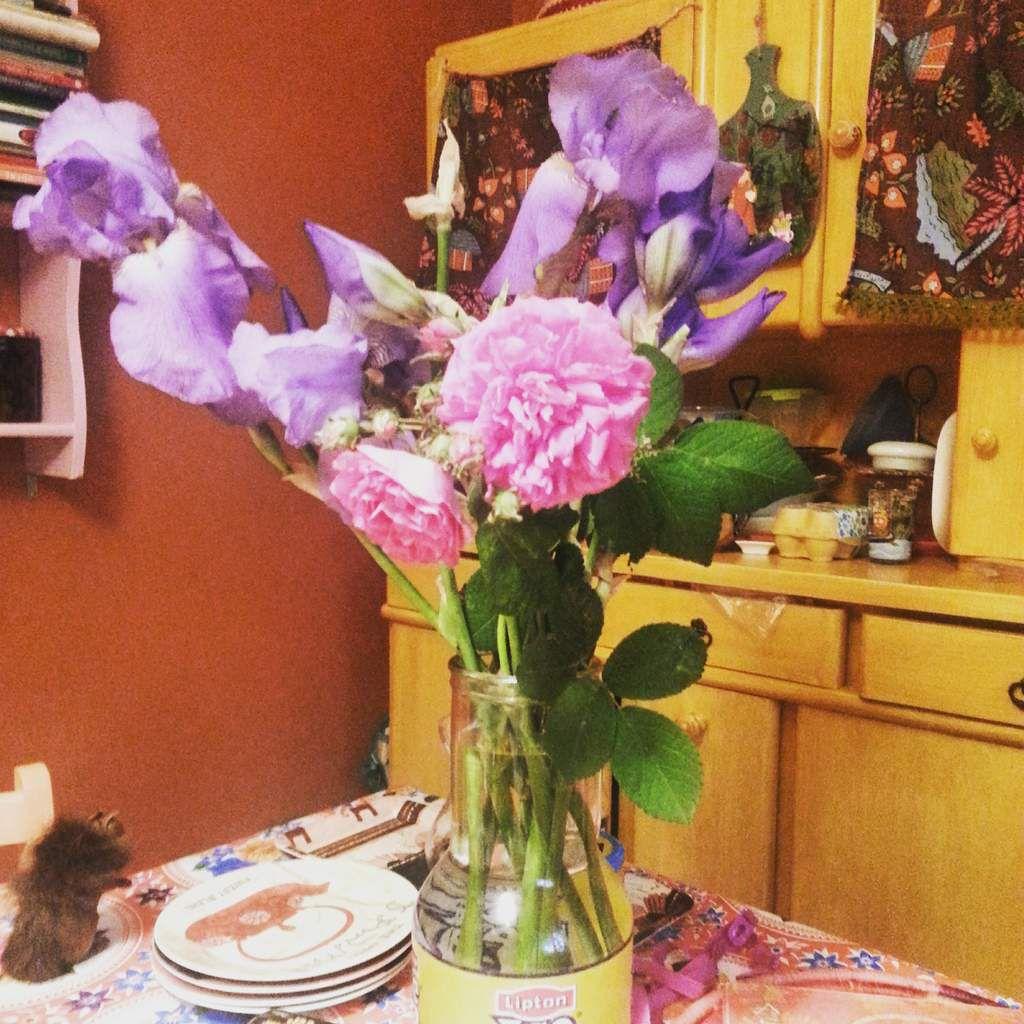 Les jolis iris et roses anciennes du jardin de mes parents.