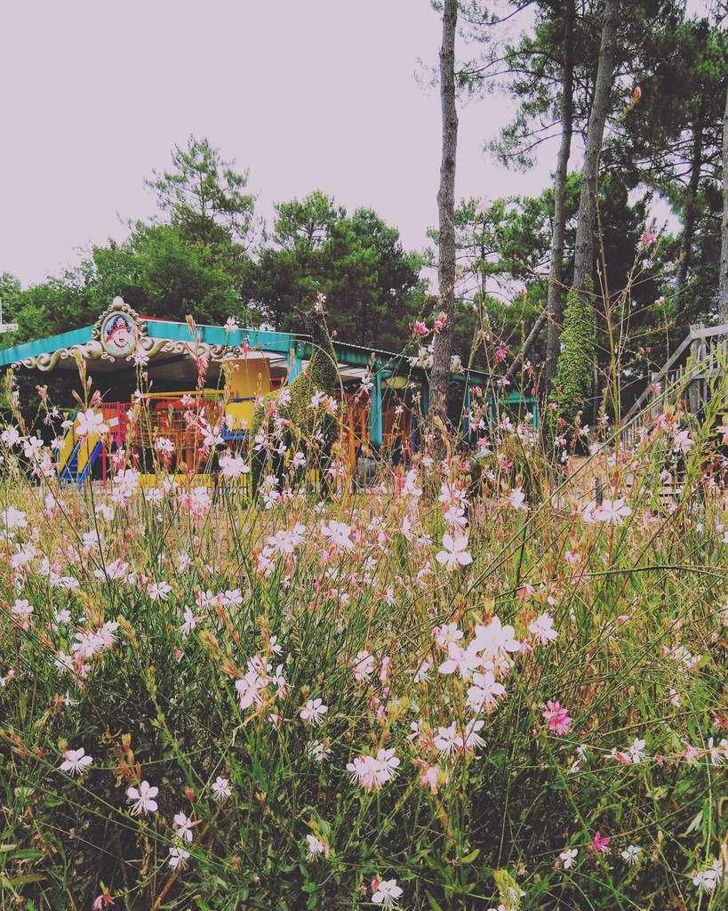 Nous sommes retournés au parc d'attractions, Kid Park, qui nous avait tant plu l'année dernière...