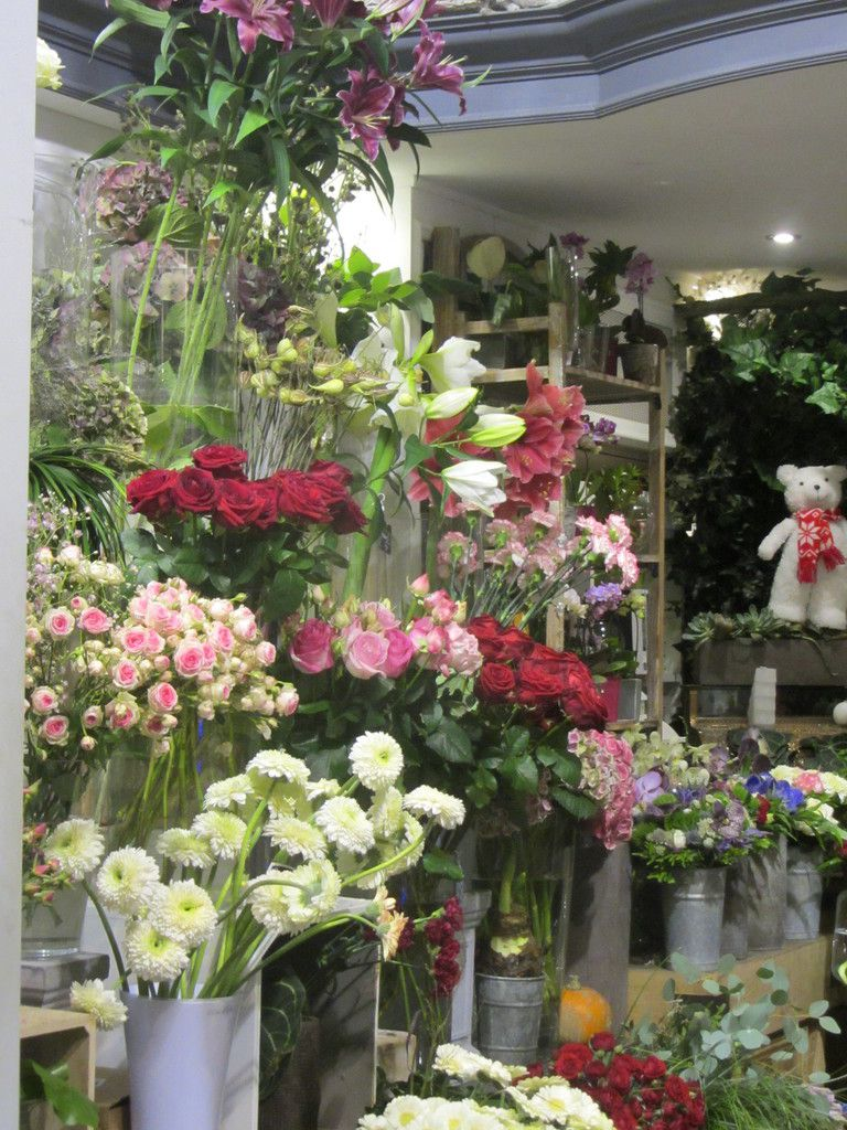 Fleurs du lac for Showroom mobalpa thones