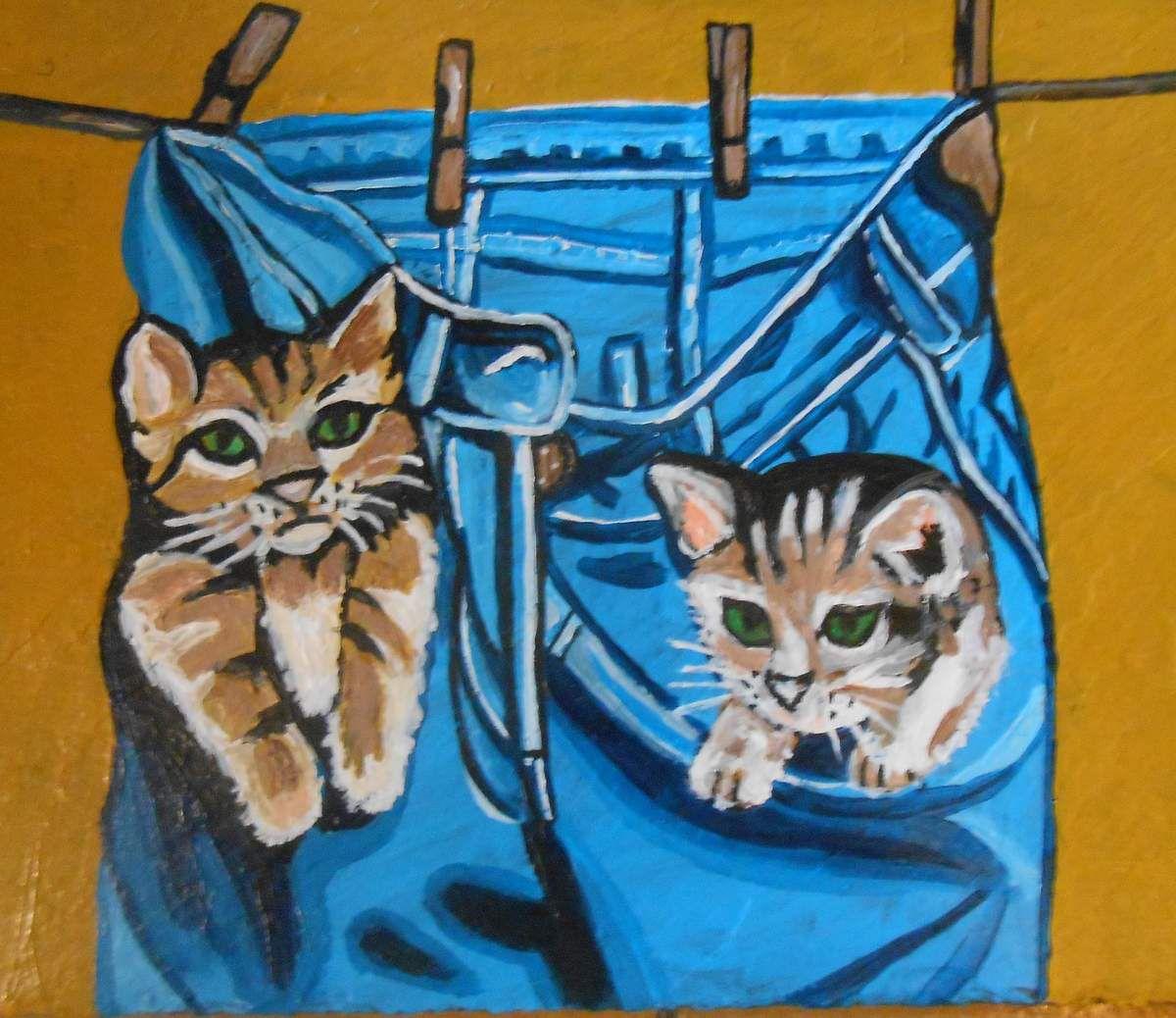 Deux chatons dans des poches de pantalon