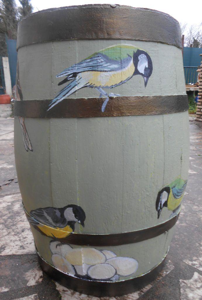 Des oiseaux de jardins et des champignons