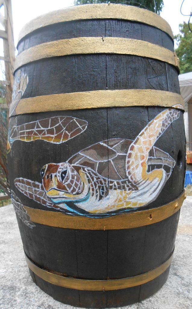 Des tortues de mer