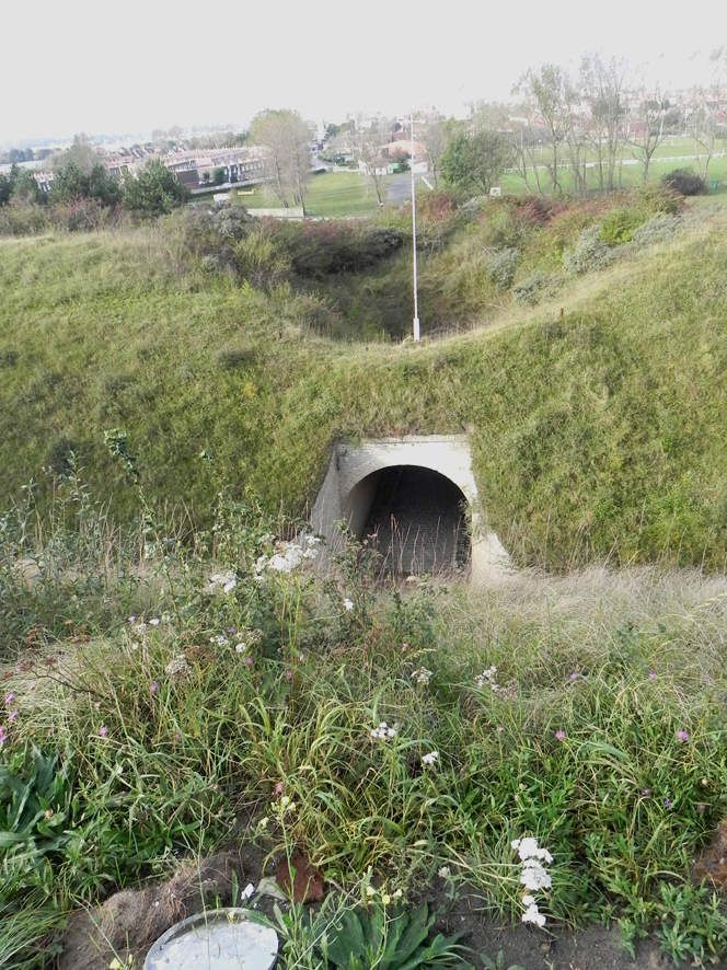 AMOPA: visite du Fort des Dunes à Leffrinckoucke (Nord)