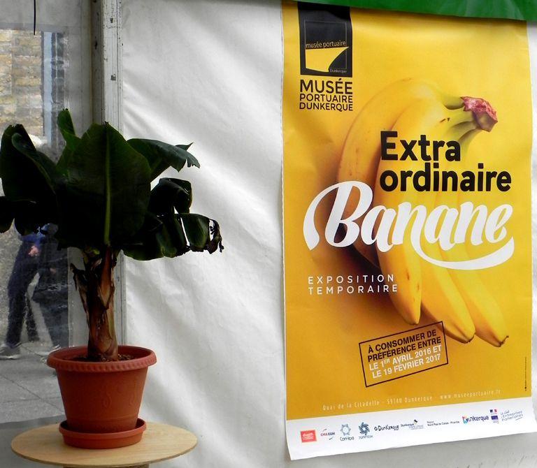 Dunkerque: exposition extraordinaire banane