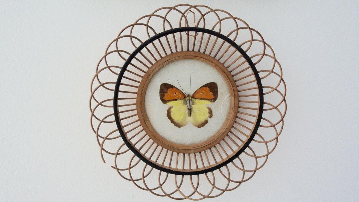 Petit cadre papillon ou dessous de bouteille Années 70 - Vintage