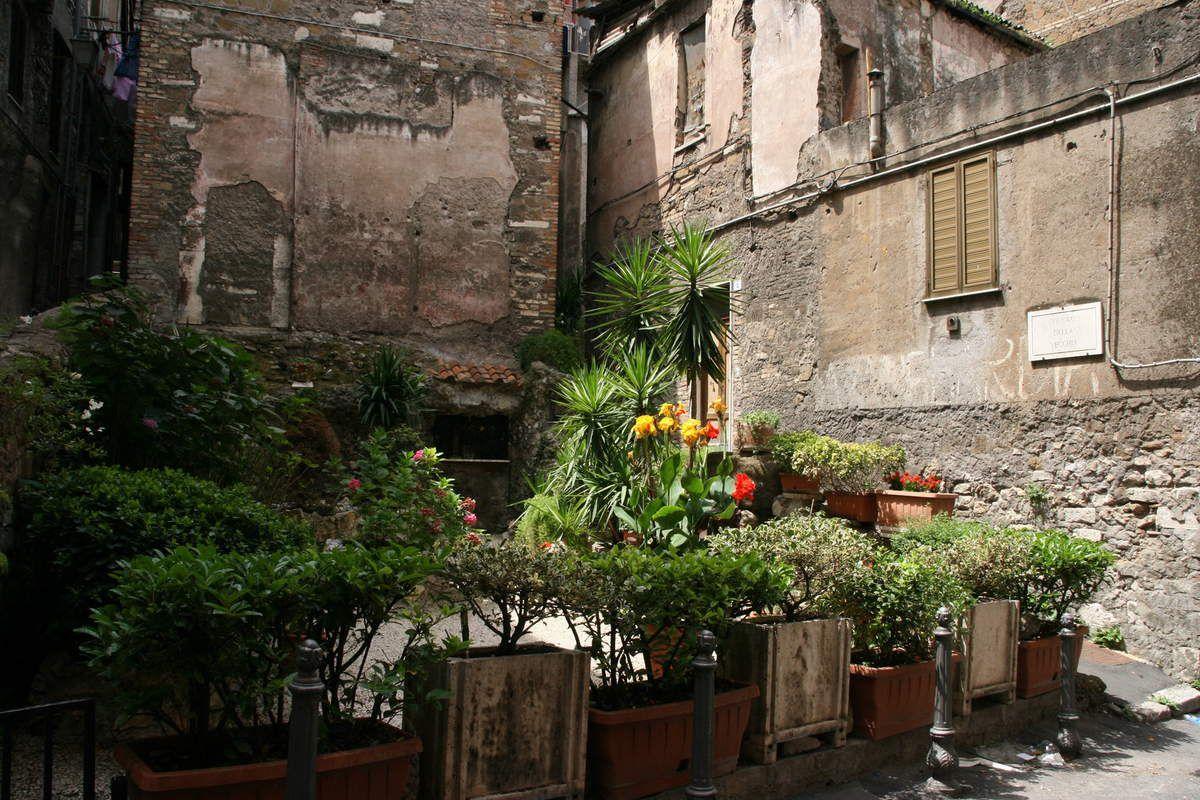 Dans les rues de Tivoli et fettuccine maison (un régal)