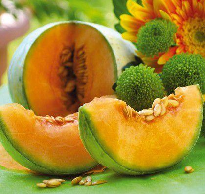 le melon(pour le coucou du haiku)