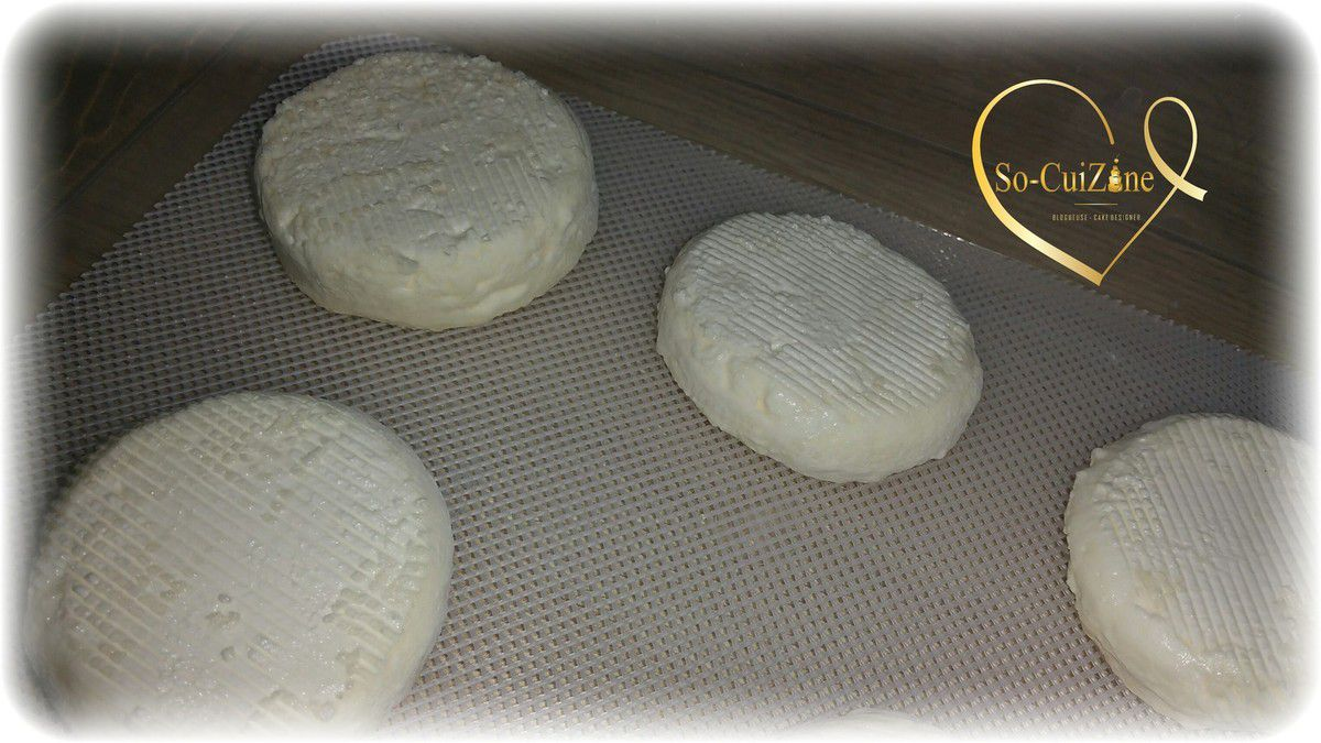 Fromage maison kit affin moulage et s chage so cuizine for Affinage fromage maison