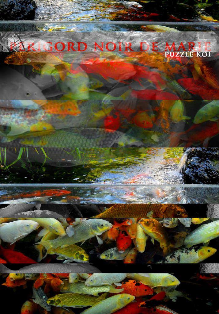 À l'Aquarium du Périgord Noir (au Bugue)/ Photos Périgord Noir de Marie/ T.Chaudière