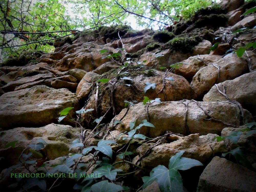 Randonnée d'Automne à La Roque-Gageac