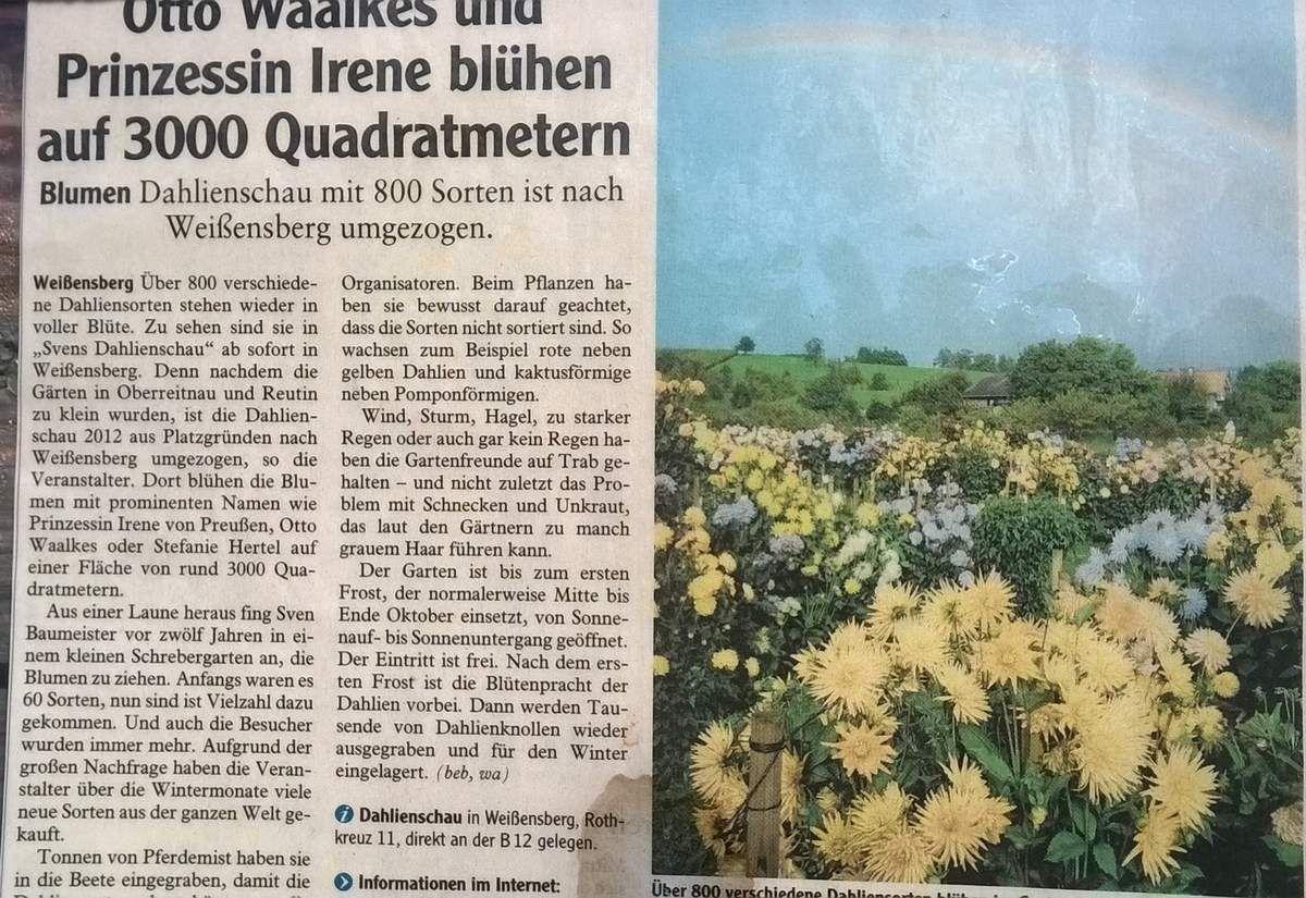 Sorry, Sven...keine böse Absicht: hab die Internetinfo nicht auf dem Foto: die Dahlienschauen lassen sich aber problemlos googeln!