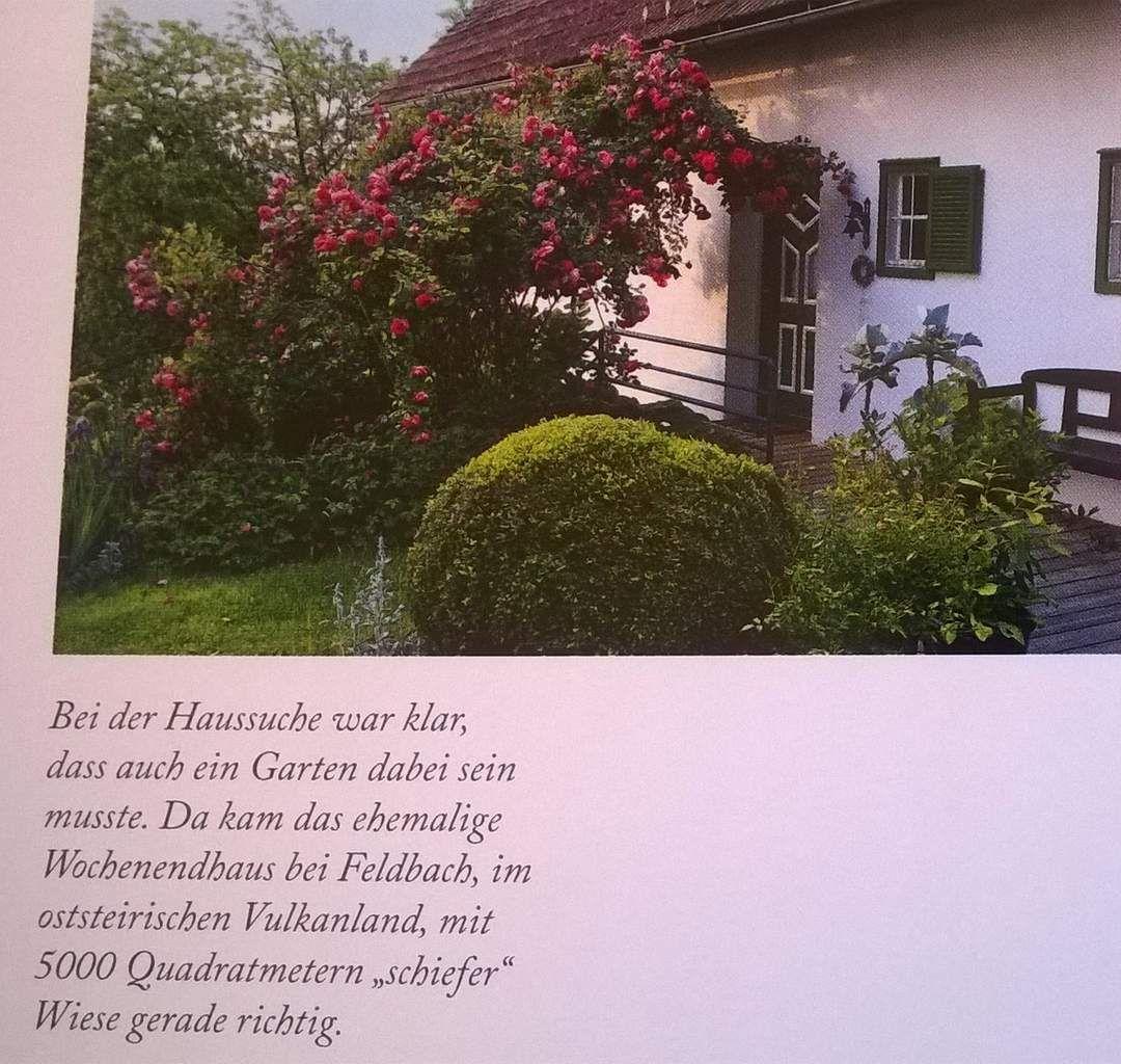 """Rosen gehören für die Gartenplanerin unbedingt dazu: Unter der Kletterrose """"Parade"""" geben sich Buchs und blau blühende Bartiris ein Stelldichein (Text aus dem Buch)"""