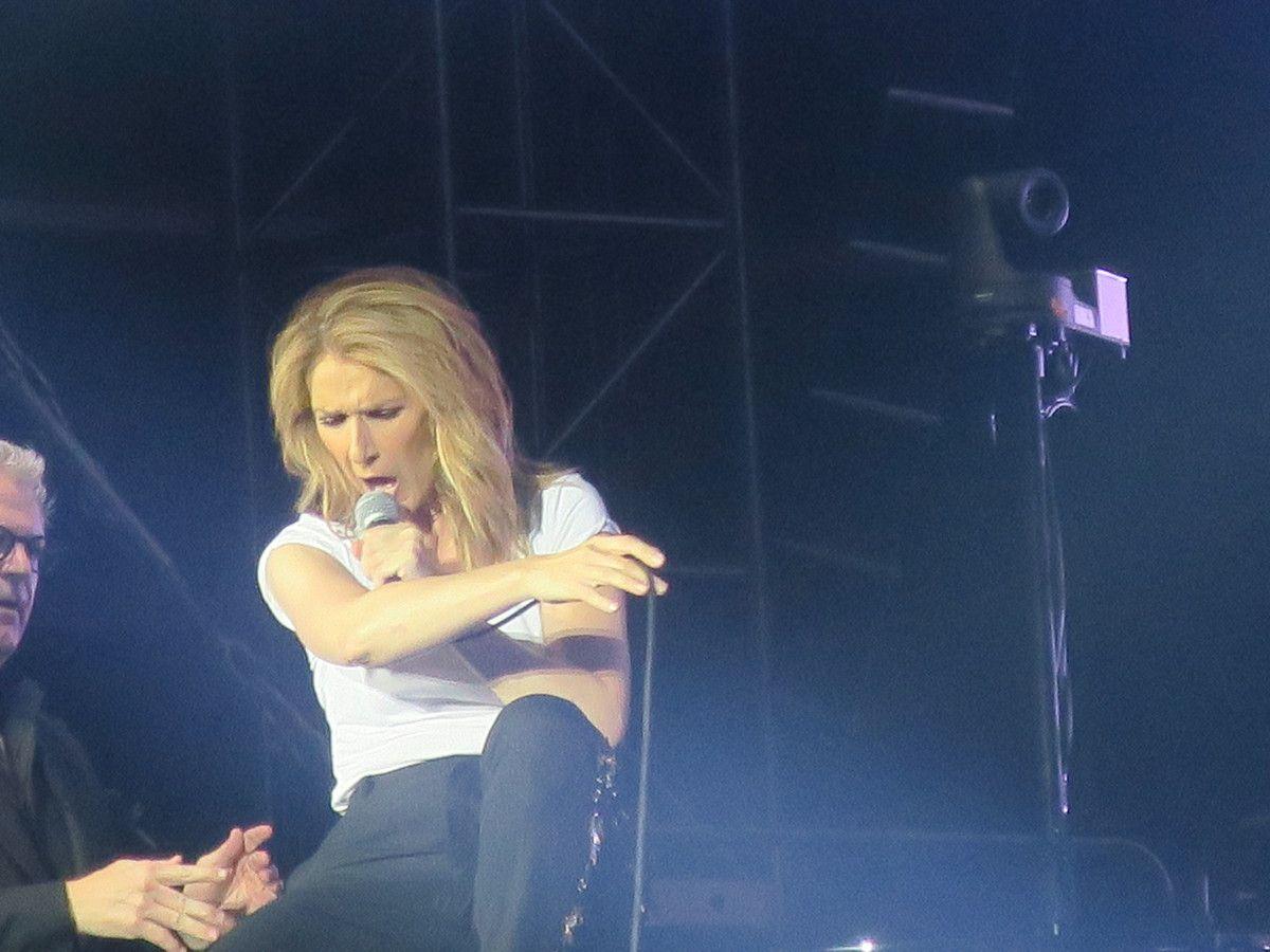 Photographies du concert de Céline Dion à Lyon le 12 Juillet 2017