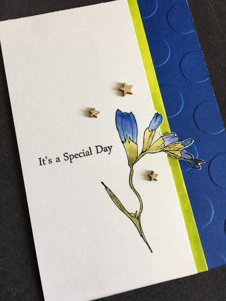 Carte &quot&#x3B;It's a Special day &quot&#x3B;.