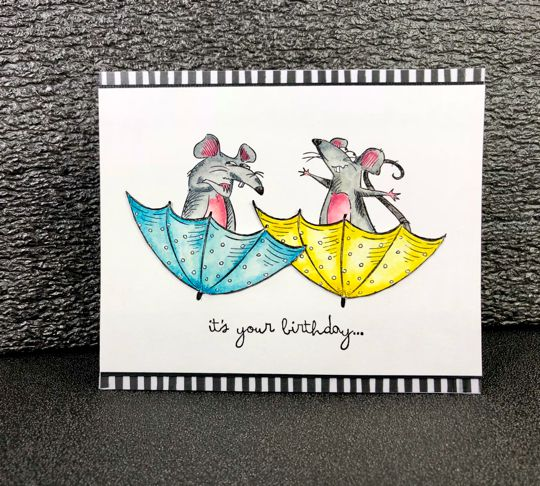 Carte « It's your Birthday » Katzelkraft