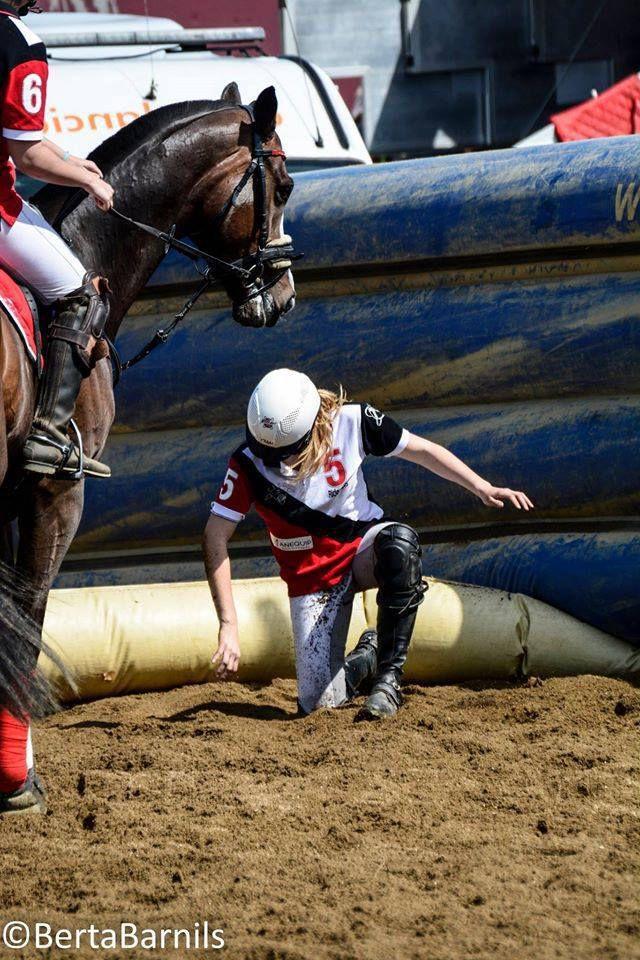 Horse ball : les 8 équipes de l'AEF