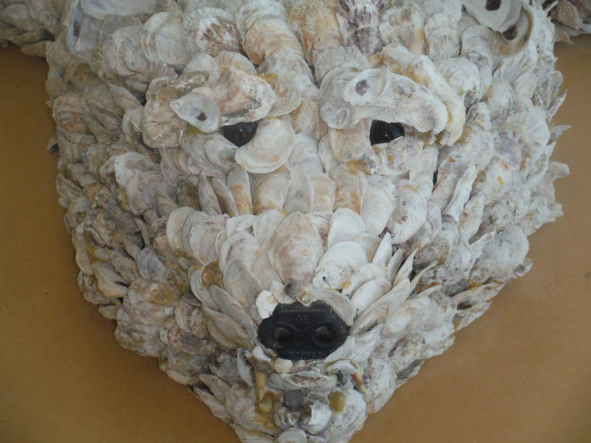 Ours blanc en coquilles d'huître...