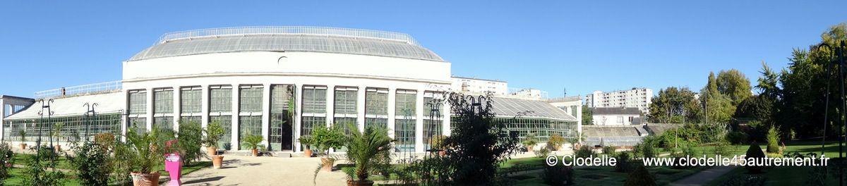 Atelier du jardin des plantes le 18 octobre entretien for Entretien jardin orleans