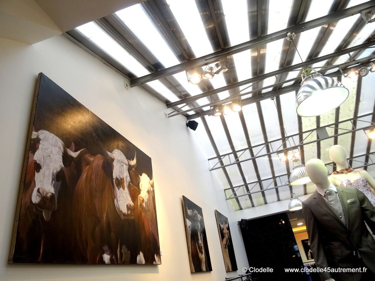 - PHOTOS de l'élégante exposition de CAPTON chez HOWEN à ORLEANS jusqu'au 11 avril