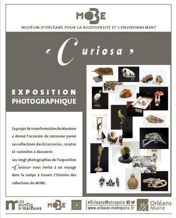CURIOSA, EXPOSITION PHOTOGRAPHIQUE dans les allées du Parc Pasteur d' ORLEANS du 5 mai au 30 juillet 2017