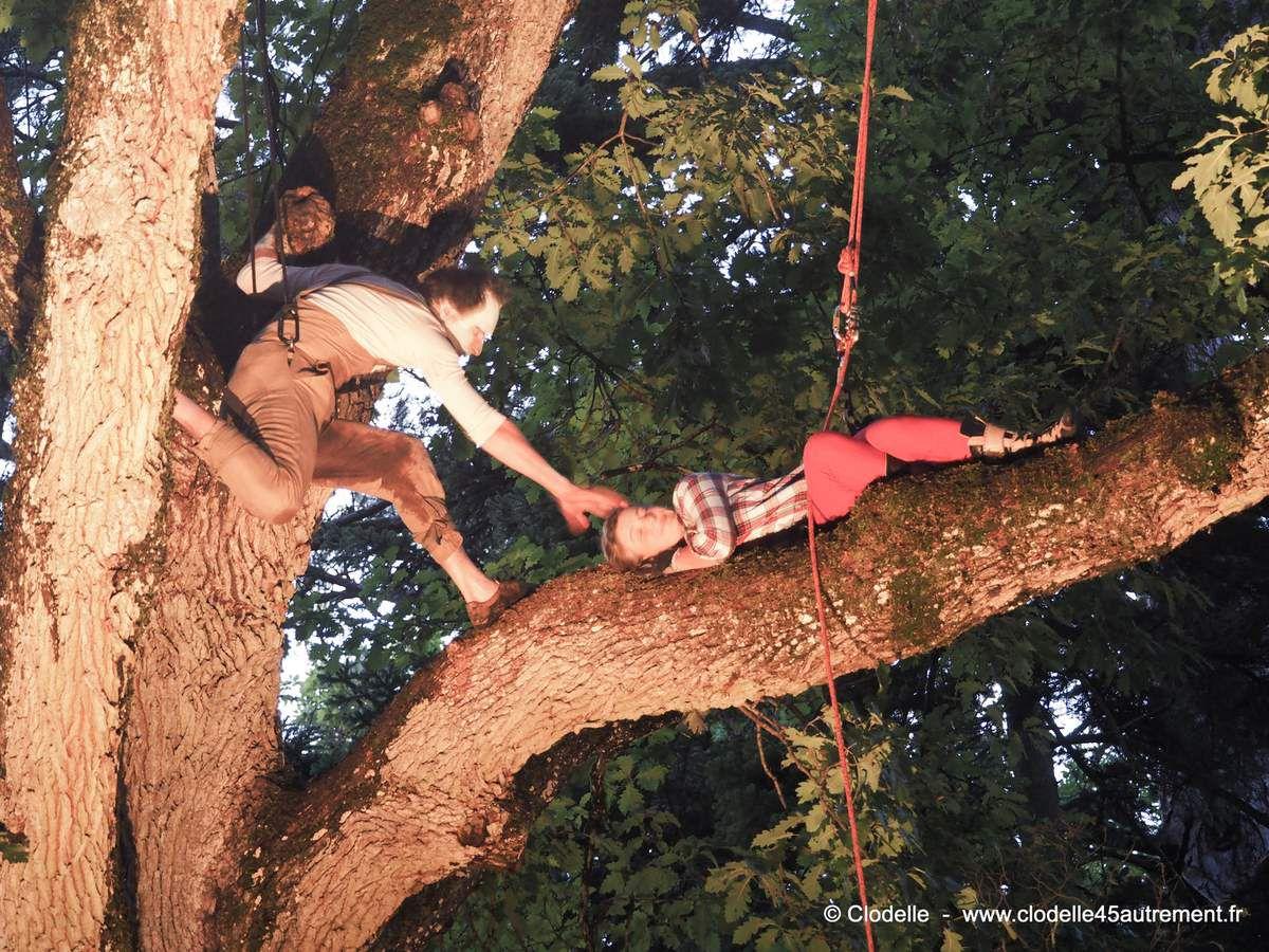 GRANDES NUITS DE L'ARBORETUM DES BARRES #6 en août 2017: Le Peuple de l'arbre, spectacle suspendu dans un chêne