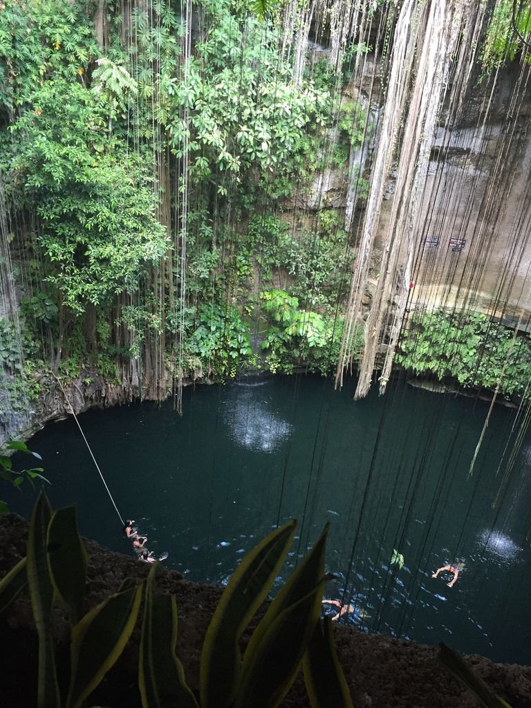 Cenote : feeling was incredible, lost in the beauty of nature...