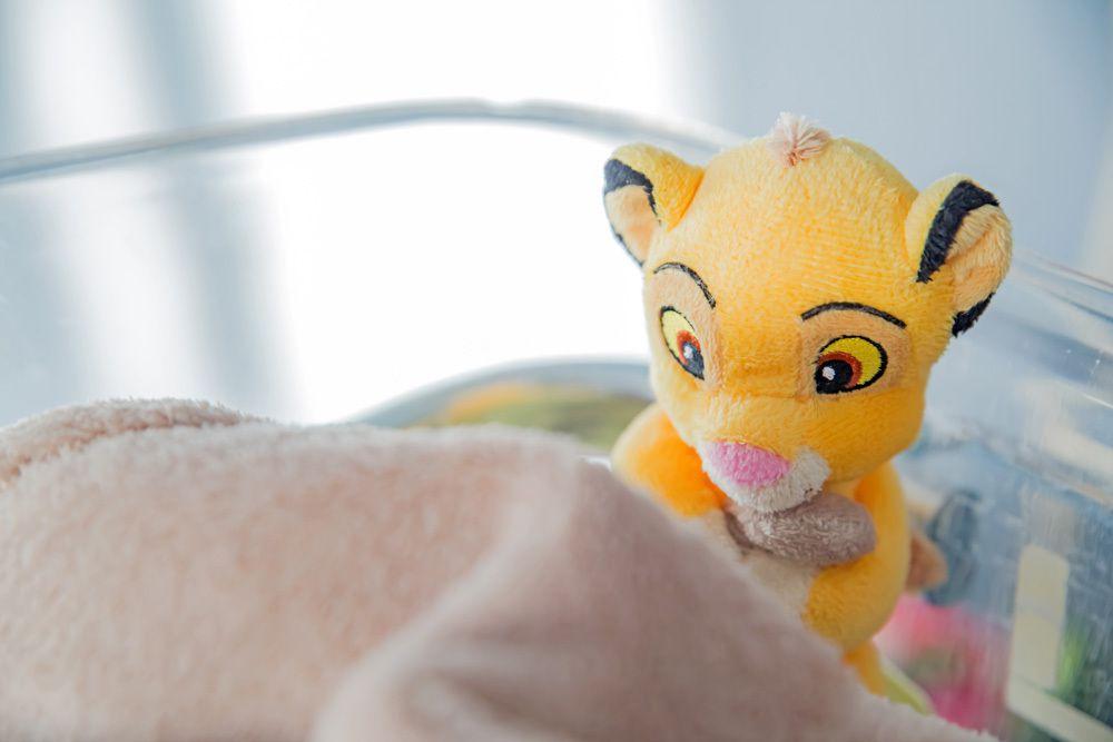 Séance photo nouveau-né (maternité) du 07/11/14, Bordeaux (Pellegrin)