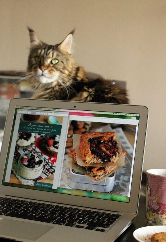 &quot&#x3B;Accro aux noix !&quot&#x3B; le nouvel ebook d'Alice Greetham Au Vert avec Lili {Concours inside !}