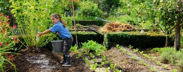 1 permaculture l 39 autre fa on de jardiner lorgues for Permaculture en pratique