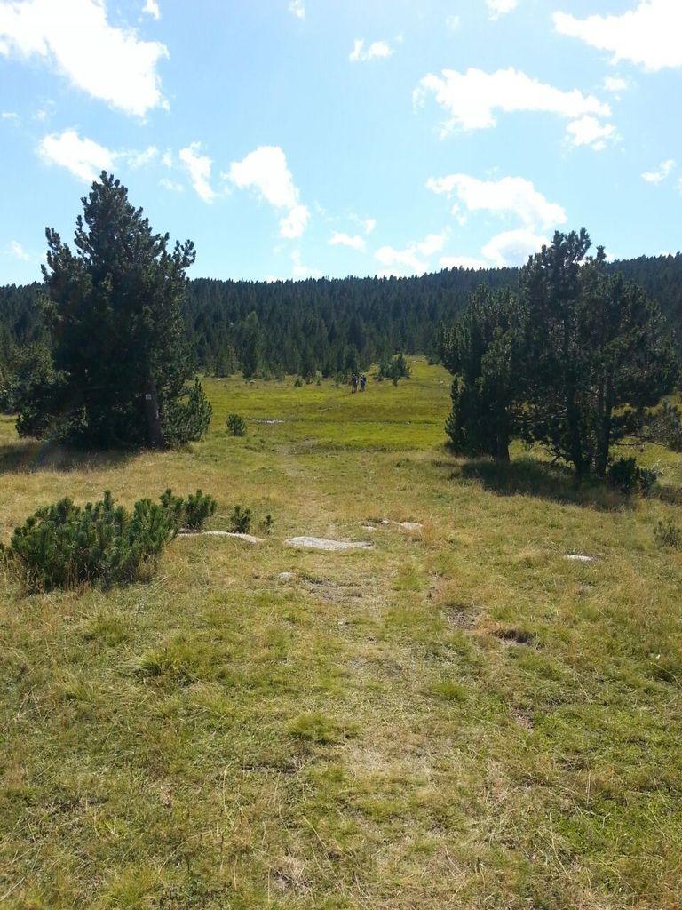 Randonnée, trail et course