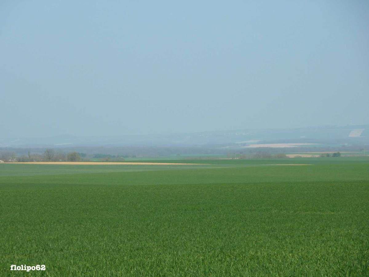 sur la route de druyes les belles fontaines le 24 mars 2012 - paysages