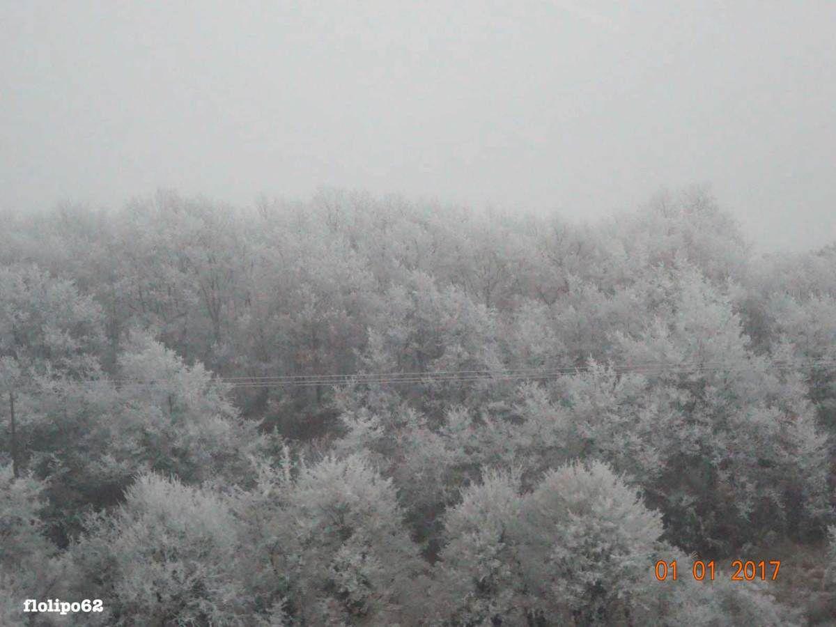 janvier 2017 - 5