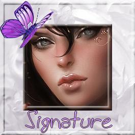 Des signatures et leurs avatars