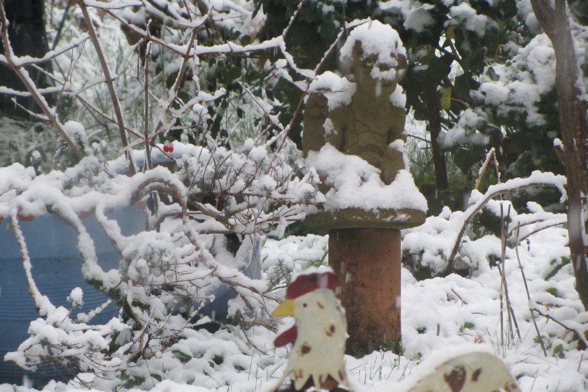 Jour de neige au jardin