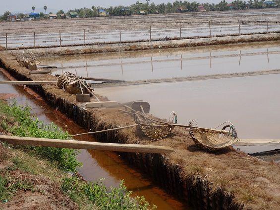 Kampot, poivre et sel...