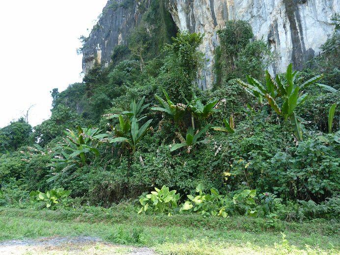 Muang-Ngoi, notre petit coin de paradis
