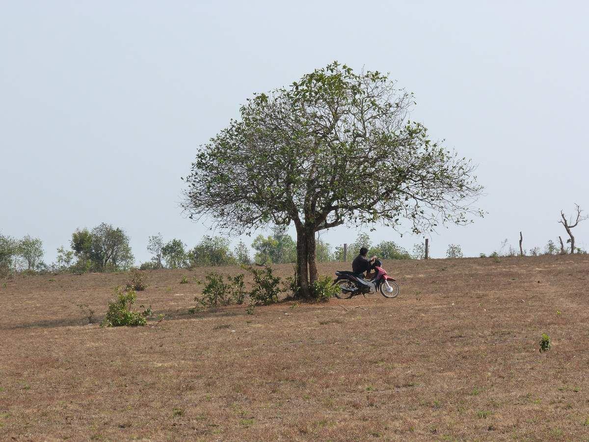 Sen Monorom dans  Le Mondulkiri (Cambodge)