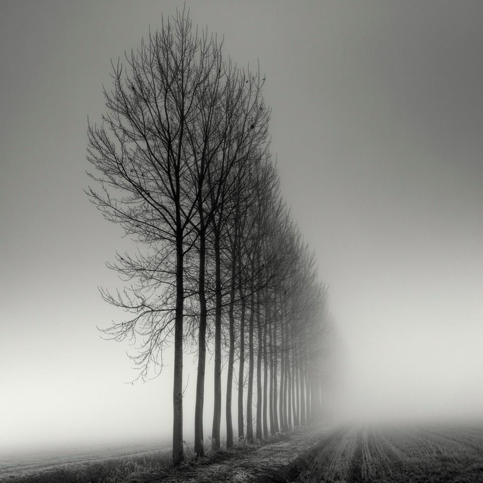 """C'est par des clichés comme celui-ci que la photo """"noir et blanc"""" montre sa supériorité définitive sur la couleur."""