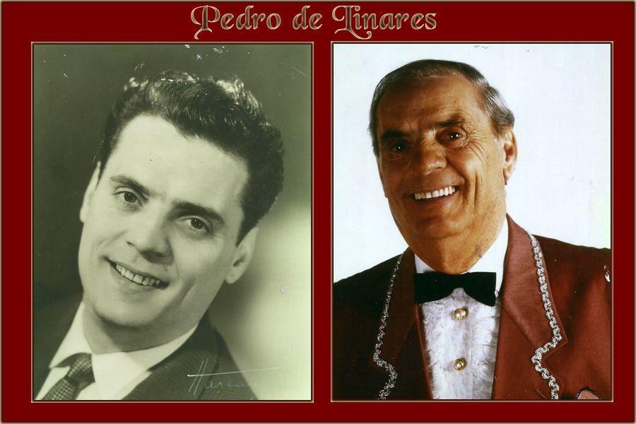 Pedro de Linarès(de son vrai nomPierre Pardo, né en 1924 à Chollet) est mort à 92 ans ce 23 octobre 2016. Pour ceux qui ne l'ont pas connu, il eu ses heures de gloiresest un chanteur et musicien de flamenco et demusique arabo-andalouse. Ses 33 toursrésonnent toujours dans mon oreille.