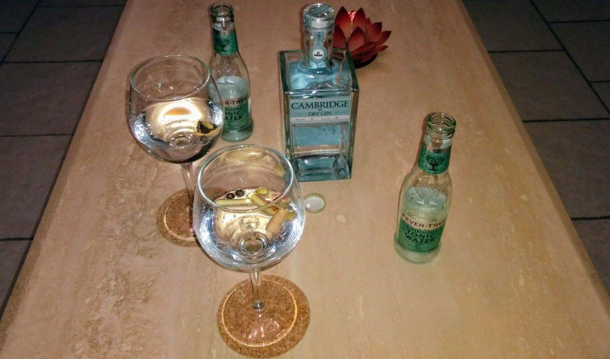 Gin tonic : apéro très apprécié en Angleterre. Cambridge Dry Gin: a gin for all seasons!