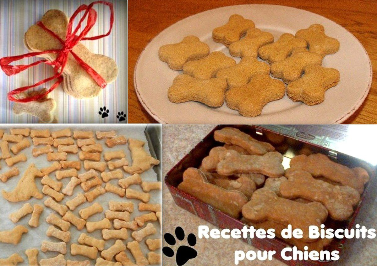 recettes biscuits pour chiens faits maison le serviettage de nafeuse. Black Bedroom Furniture Sets. Home Design Ideas