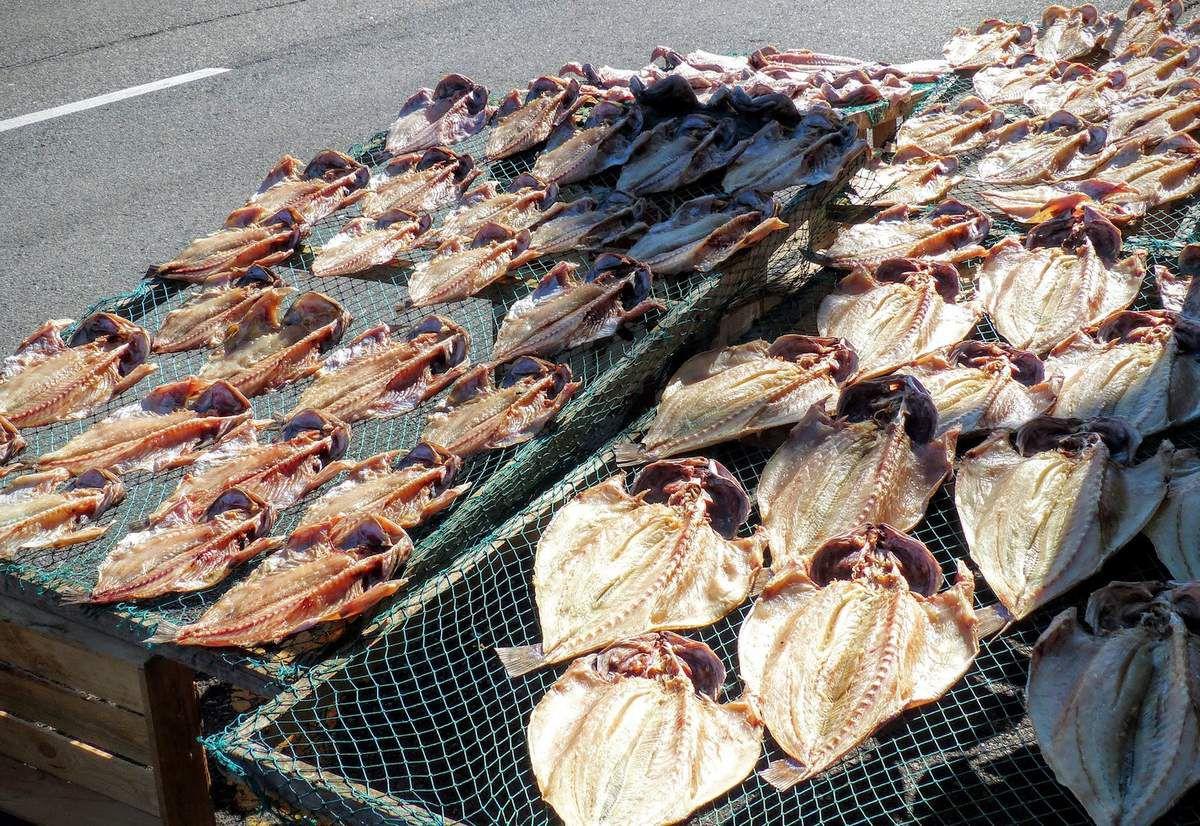 Mokpo &#x3B; le marché aux poissons