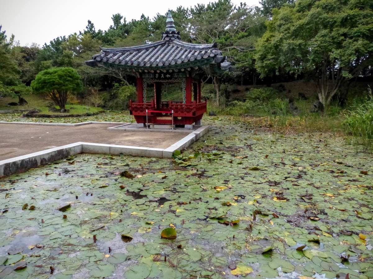 Yeomigi park&#x3B; jardin botanique dans un parc tropical&#x3B;
