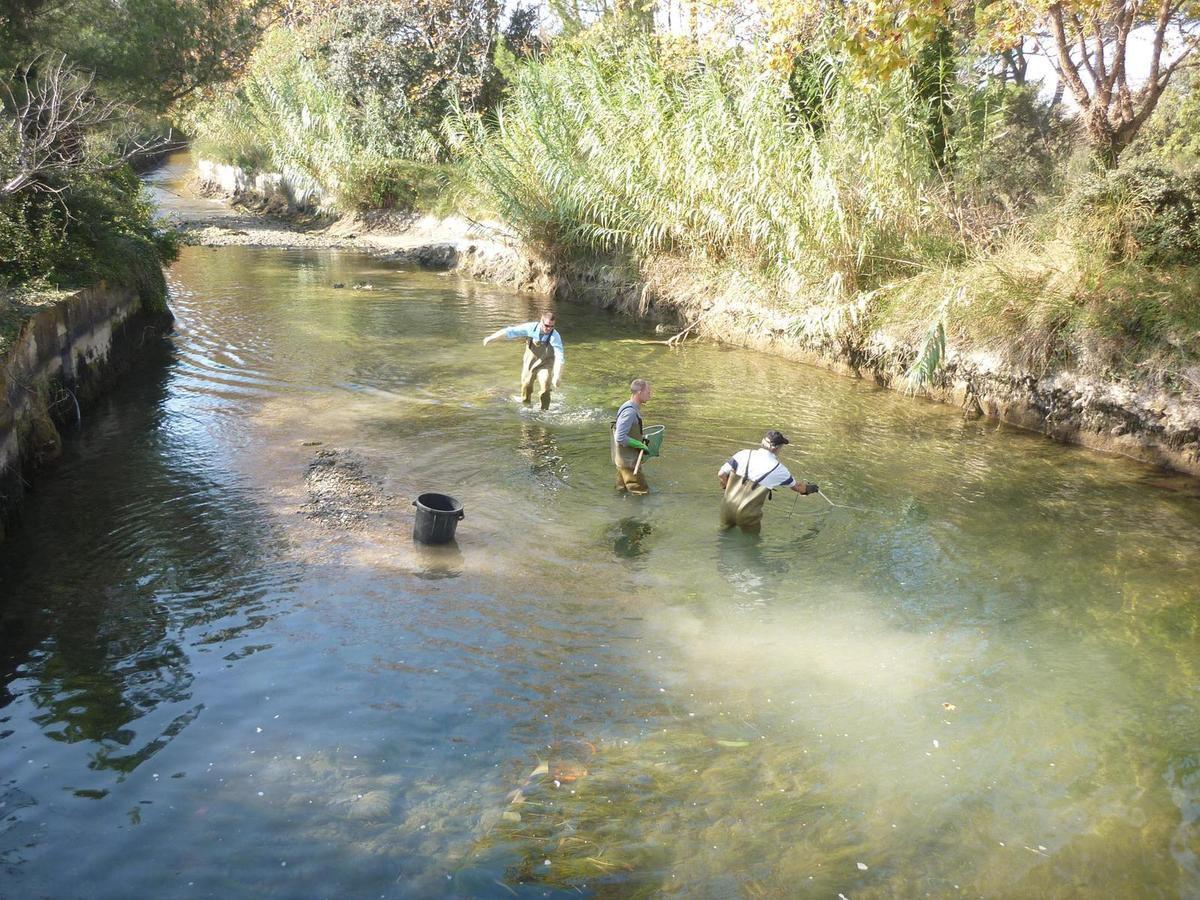 201410&amp&#x3B;11 Pêche de sauvetage Craponne