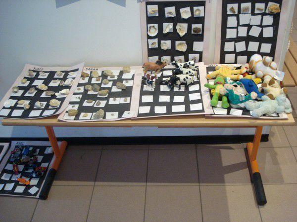 Cabinets de curiosités et collections chez Julien