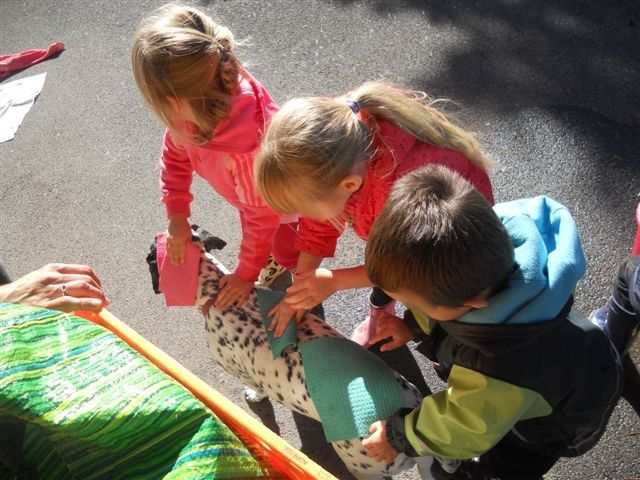 Lavage et ateliers talents des parents chez Sylvie E