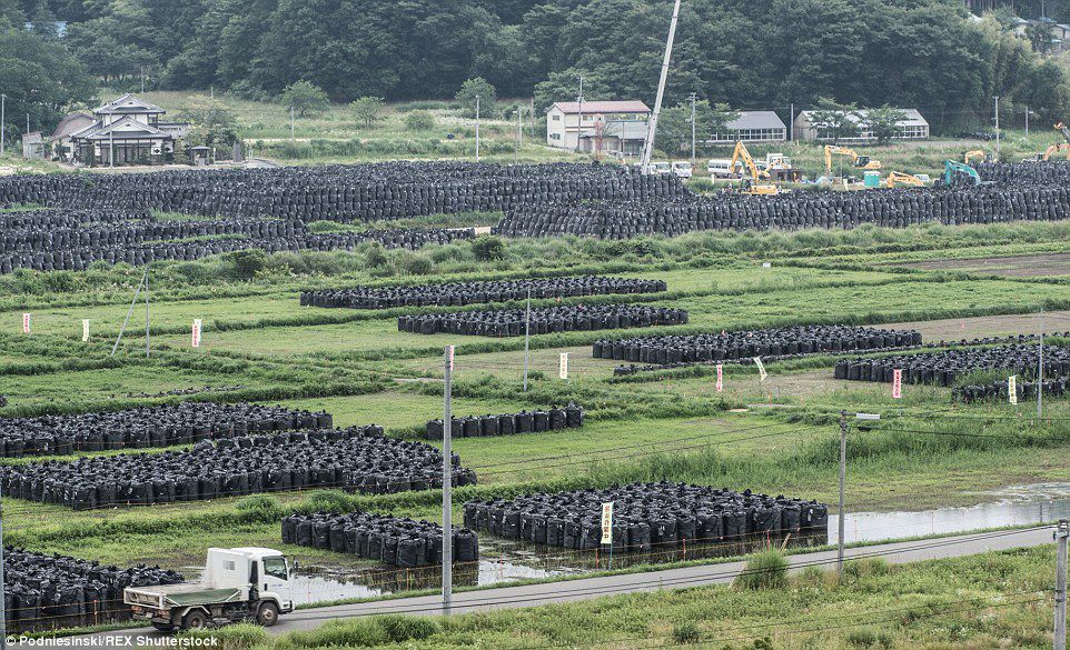 Des photos post-Fukushima qui ne sont pas de la science-fiction...