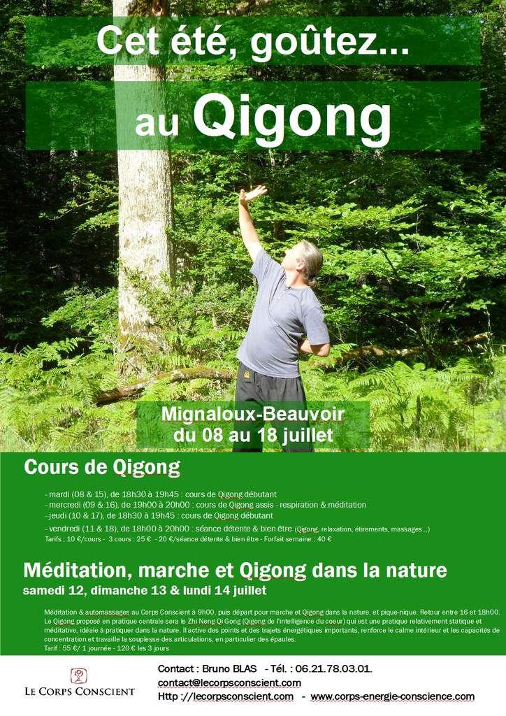 Cours et stage de qigong juillet 2014 ecole de qigong for Arts martiaux pdf
